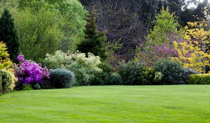 Jardin municiapl Mussoorie