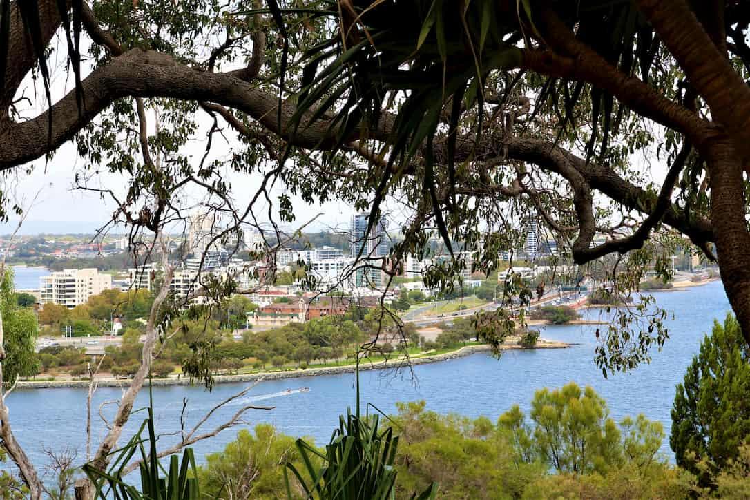 Jardin botanique de Perth