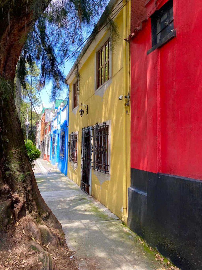 Rue de Coyoacan Mexico City