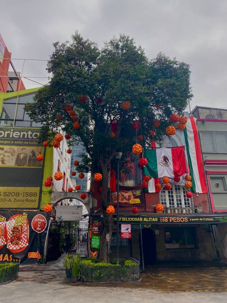 Roma quartier Mexico City
